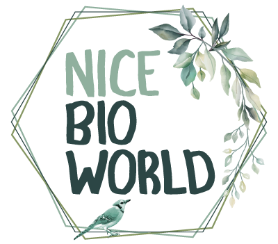 Nice Bio World